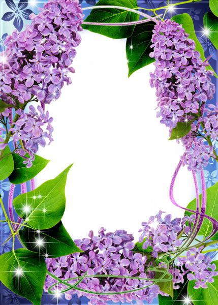 beautiful transparent png frame  lilac gallery