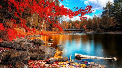 Backgrounds For Desktop Autumn Wallpaper For Desktop 183