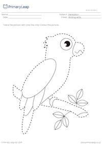 trace  colour parrot