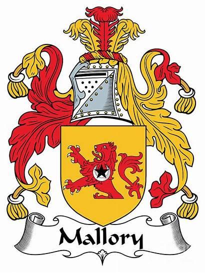 Arms Coat Irish Mallory Swift Heraldry Digital