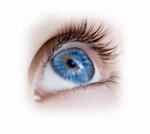 Ophthalmology, University of Kansas Medical Center