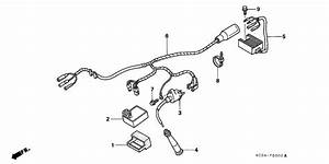 Wire Harness  U0434 U043b U044f Xr250r Honda