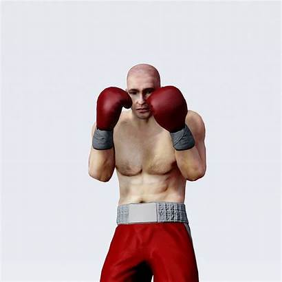Boxer Heavyweight 3d Professional Poly Low Models