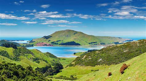 Exploring Dunedin And New Zealands Otago Peninsula