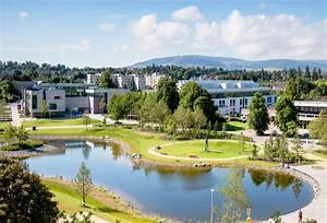 UCD for international students - Education in Ireland