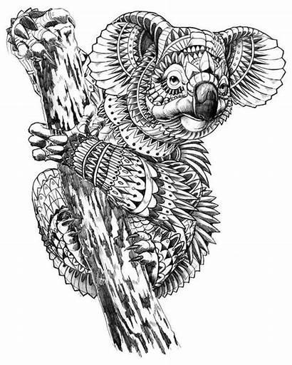 Mandala Coloring Animal Pages Koala