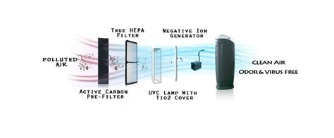 what does an ionizer do how does an ionic air purifier work for healthy air