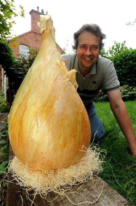 World's Biggest Onion