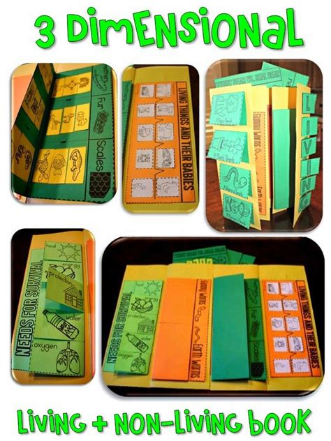 Living And Nonliving Folding Book Of Activities  New Teachers  Pinterest  Activities, The O
