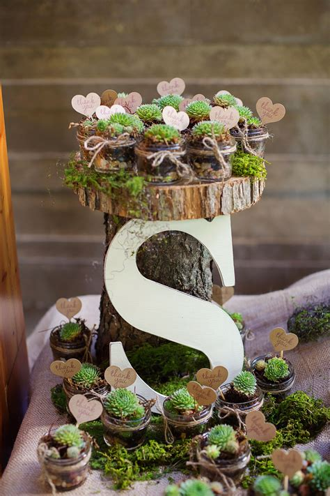 Potted Succulent Wedding Favors Theistheknot