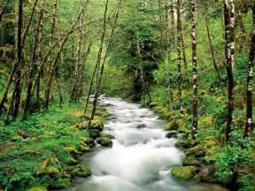 Margy's Musings: Oregon - Beautiful Scenery Oregon