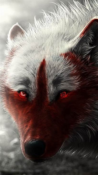 Wolf Scary Wallpapers Background Iphone Android Cool