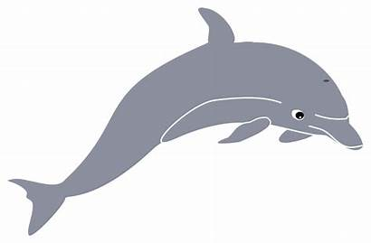 Dolphin Clipart Clip Wave Svg Dolphins Meza