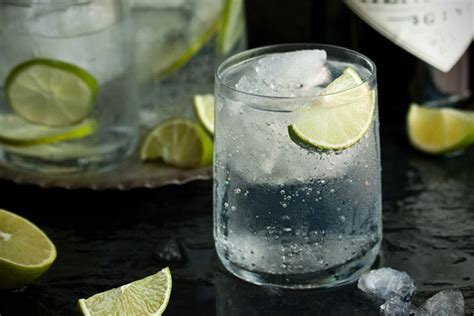 gin and tonic recipe essential cocktail recipes 30 best gin drinks hiconsumption