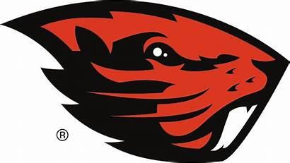 Oregon State Beavers Colors University Codes Rgb
