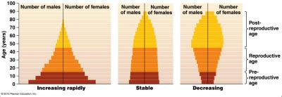 Age Structure Diagram by Chapter 6 Population Biology Curriculum Idfk With