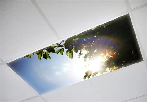 tree 005 fluorescent light covers