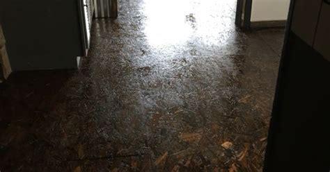 osb stained floor cabin pinterest flooring ideas  unique furniture