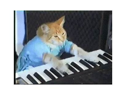 Cat Keyboard Piano Gifs Typing Play Tenor