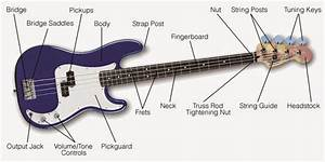 Parts Of The Bass