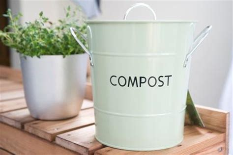 kitchen compost bin bring news to literally back to the roots