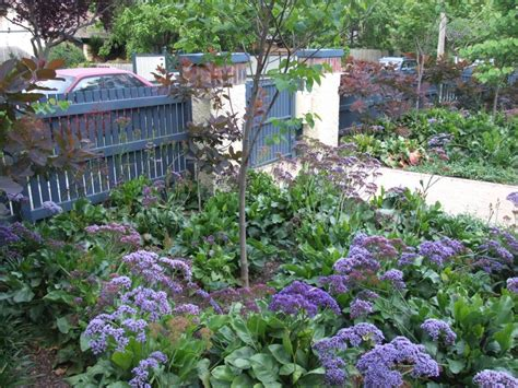 gardens inspiration lisa ellis gardens australia