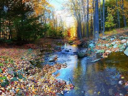 Autumn Leaves River Nature Desktop Background Wallpapers