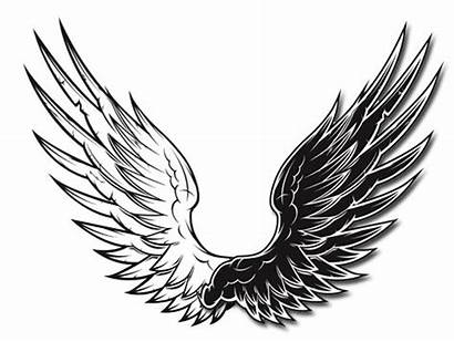 Wings Vector Clip Graphic Graphics Amount Hive