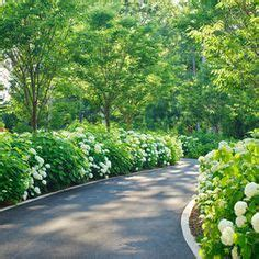 rural driveway ideas 1000 ideas about driveway border on pinterest driveway edging low maintenance landscaping