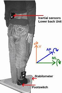 Placement Of Sensors  Ml Stands For Mediolateral  Ap