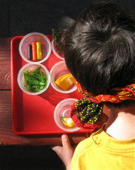 play  senses guessing game activity educationcom