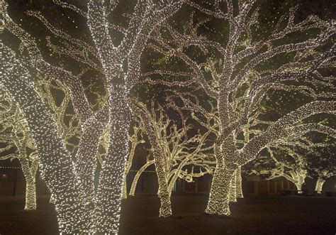 top 5 places to see holiday lights brahma news