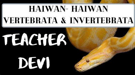 Haiwan-haiwan Vertebrata & Invertebrata - YouTube