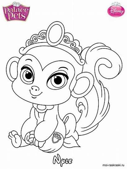 Pets Coloring Palace Pages Disney Mycoloring Printable