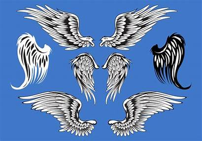 Wings Vector Abstract Illustration Wing Angel Vectors