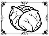 Lettuce Coloring Printable Pages Sheet Getcolorings sketch template