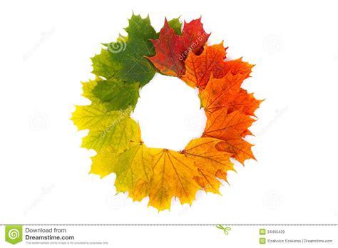 Autumn Wreath Stock Image Image Of Colorful Wreath