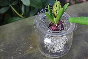 Frühlingsdeko Im Glas : fr hlingsdeko im glas selber machen home sweet home ~ Orissabook.com Haus und Dekorationen
