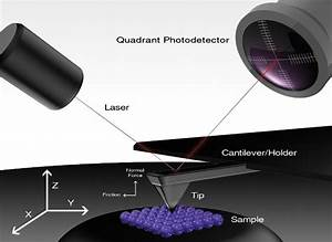 Application Story  The Atomic Force Microscope As A Vital