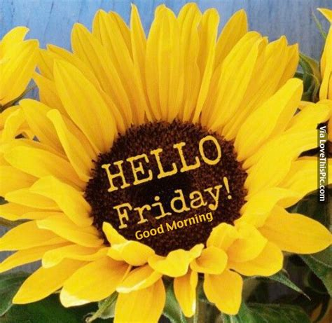 friday good morning pictures   images