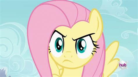 Mlp Fluttershy Meme - fluttershy stare my little pony friendship is magic know your meme