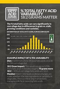 The Fatty Acid Forum  U00bb Quick Guides To Fatty Acids