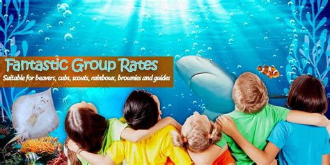 blue reef aquarium portsmouth buy discounted tickets