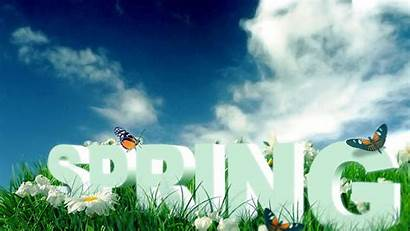 Spring Nature Season Butterflies Coming Rate