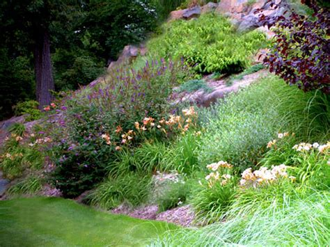 Perennial Garden Design - perennial garden design pictures and professional tips