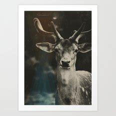 Oh Deer Ii black white prints page 10 of 100 society6