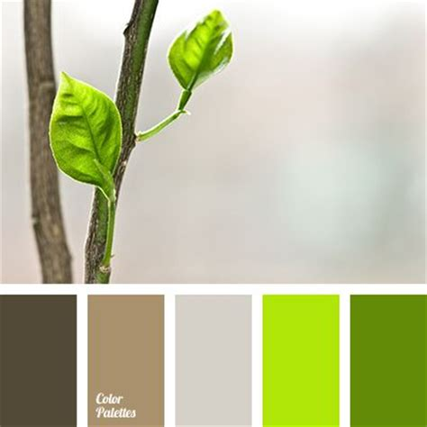 Palette Fresh Emerald Green by Best 25 Green And Brown Ideas On Brown And