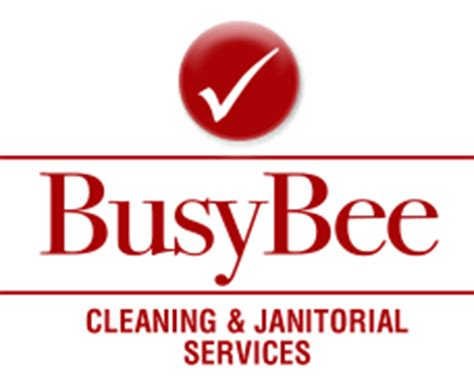 busy bee cleaning services     york ny