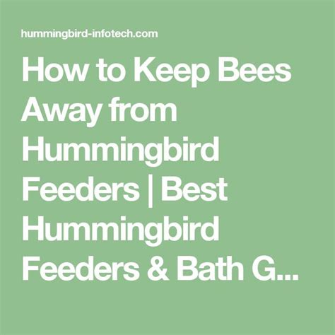 best 25 keep bees away ideas on pinterest wasp