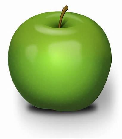 Apple Clipart Svg Background Fruit Photorealistic Illustration